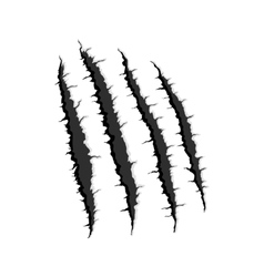 Four vertical trace monster claw vector