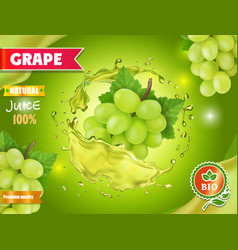 white sweet grapes natural juice advertising vector image