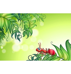 An empty stationery with an ant above the leaves vector image vector image