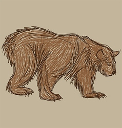 bear sketch vector image