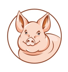 farm pig vector image