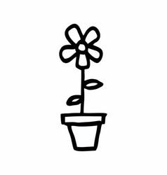flower in a vase vector image