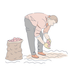 man planting potato in garden on ground or soil vector image