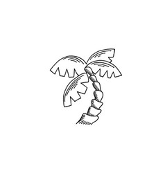 palm tree sketch drawing icon summer themed vector image