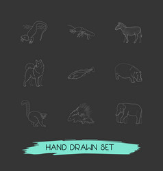 Set of zoo icons line style symbols with hippo vector