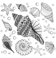 set Shells zentangle seeshell for adult vector image
