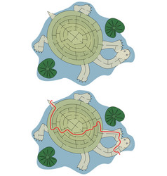 easy turtle maze vector image vector image