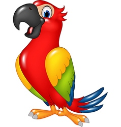Cartoon funny parrot isolated on white background vector image