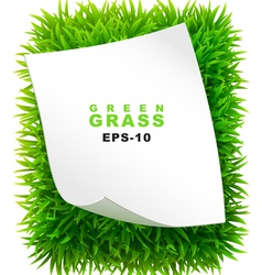 Grassy rectangle with a clean sheet of paper vector image vector image