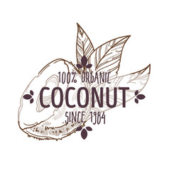 100 percent organic coconut cracked open with vector image