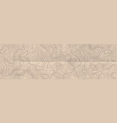 Abstract horizontal long banner with topographic vector