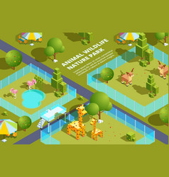 landscape zoo with various animals stylized vector image