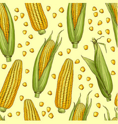 seamless patterns with of corn vector image