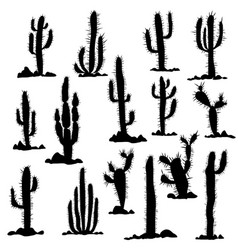 silhouettes cactuses and stones vector image