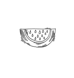 watermelon sketch drawing icon summer themed vector image