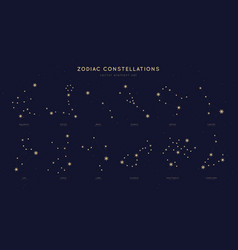 zodiac constellations set vector image