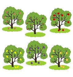 Fruit Tree Icon vector image vector image