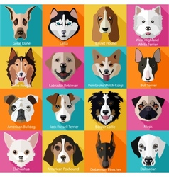 Set of flat dogs icons vector image vector image