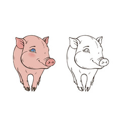cute pig in color and black and white vector image