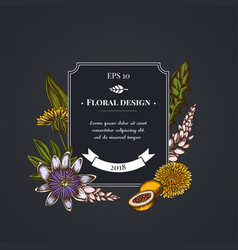 dark badge design with dandelion ginger passion vector image