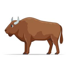 European bison animal on a white background vector