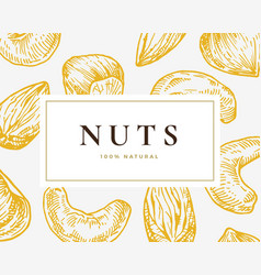 Hand drawn nuts card abstract cashew vector