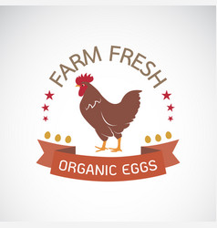 Label with the chicken on a white background farm vector