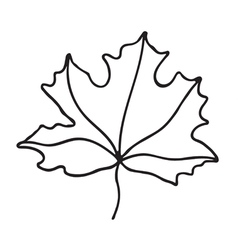 Maple leaf icon Outlined vector image