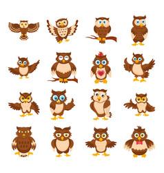 owl cartoon icons vector image