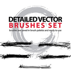 Set highly detailed torn brush strokes st vector