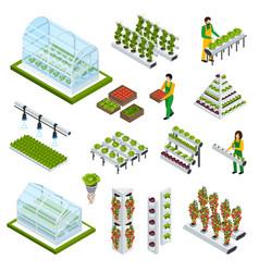 hydroponics icons set vector image vector image