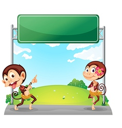 Two playful monkeys in front of the empty green vector image