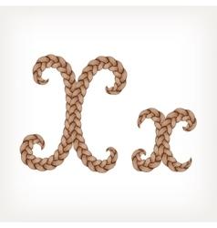 Braids hair font vector image