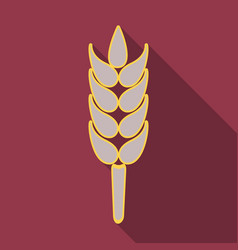 bunch of wheat ears dried whole grains realistic vector image