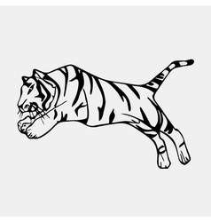 Hand-drawn pencil graphics tiger head Engraving vector