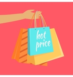 Hot Price Concept in Flat Design vector image