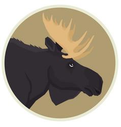 Moose forest wildlife animals rounde frame vector