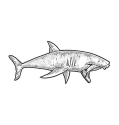 shark with bitten off leg in mouth sketch vector image
