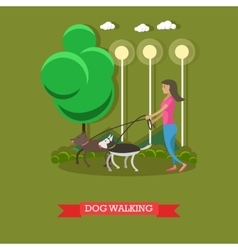 Woman walking with dogs in a park poster vector