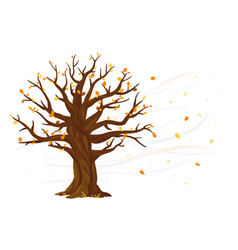 autumn leaves fall from oak tree vector image