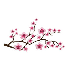 Blossom branches vector