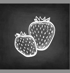 chalk sketch strawberries vector image