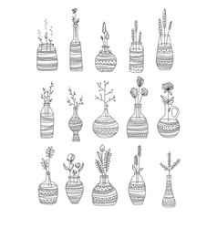 collection of glass bottles with flowers hand vector image