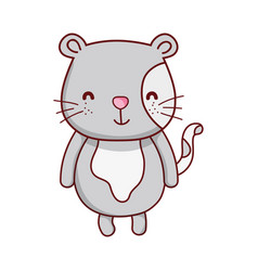 cute gray cat animal cartoon isolated icon design vector image
