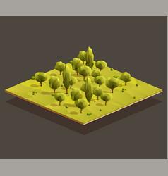 isometric woods area vector image