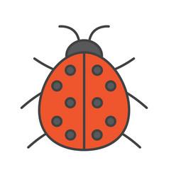 Ladybug color icon vector