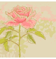Pink rose on toned background vector image