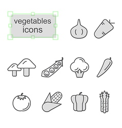 Thin line icons set Vegetables vector