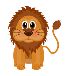 isolated cute lion vector image