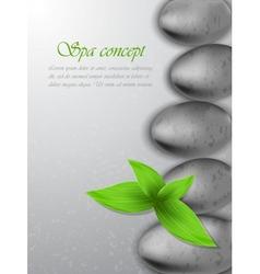 Spa concept vector image